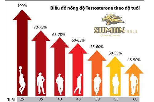 Sự thay đổi nồng độ testosteron theo tuổi