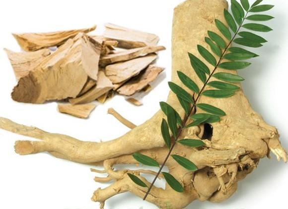 Giải pháp chữa yếu sinh lý bằng Đông y được sử dụng từ lâu